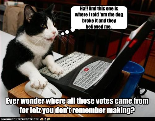 Ha!! And this one is where I told 'em the dog broke it and they believed me.. Ever wonder where all those votes came from for lolz you don't remember making?