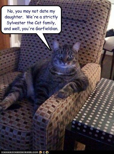 caption captioned chair dating daughter garfield judgmental sitting sylvester - 4302436096