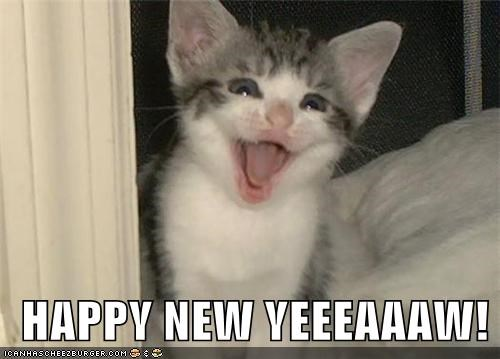 caption captioned celebrate Hall of Fame happy happy new year holidays kitten new years yelling - 4303430912