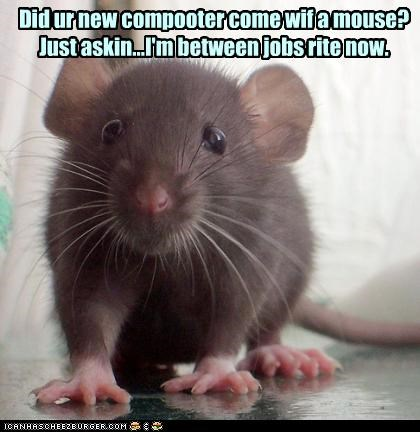 caption captioned computer jobless jobs mouse puns - 4303802368