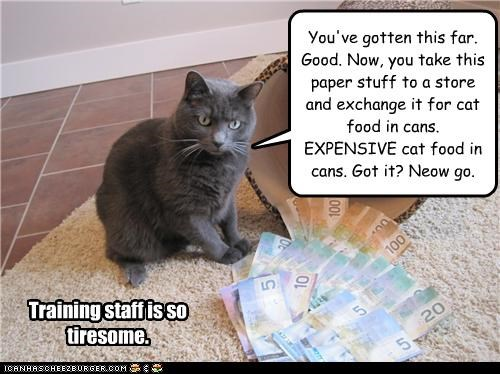 bossy,cans,caption,captioned,expensive,food,money,noms,staff,tiresome