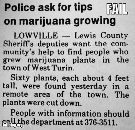 Ad,drugs,failboat,gardening,headline,help,police,tips