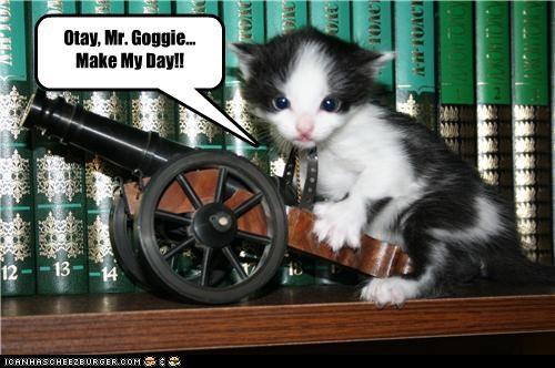 Otay, Mr. Goggie... Make My Day!!