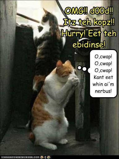 OMG!! d00d!! Itz teh kopz!! Hurry! Eet teh ebidinse! O,cwap! O,cwap! O,cwap! Kant eet whin ai'm nerbus!