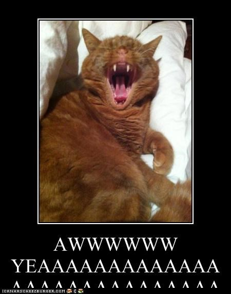 AWWWWWW YEAAAAAAAAAAAAAAAAAAAAAAAAAAAAAAHHHHHHHHHHHHHHHHHHHHHHHHHH THAT'S WUT I'M TALKIN' ABOUT!!! YEAH BABY YEAH!!!!!!!!!!!!!!!!!!!!!!!!!!!!!!!!!!!!!!!!!!!!!!!!!!!!!!!!!!!!!!!!!!!!!!!!!!!!!!!!!!!!!!!!