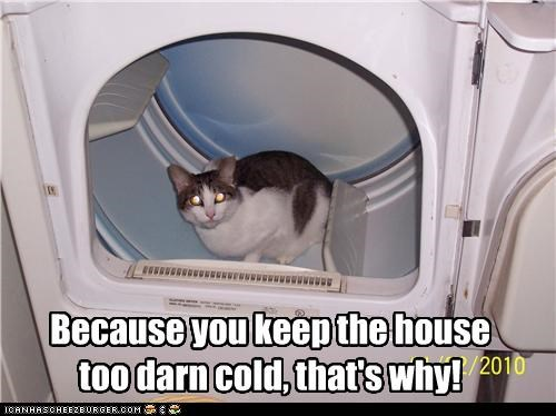 angry,caption,captioned,cold,dryer,house,warm