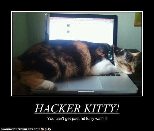 HACKER KITTY! You can't get past hit furry wall!!!!