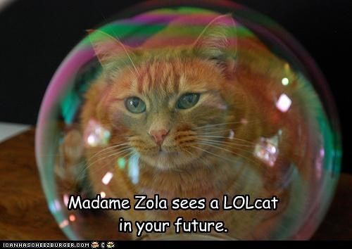 bubbles caption captioned crystal ball fortune fortune telling future lolcat madame zola - 4305805824