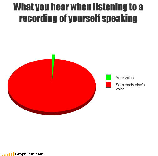 nasally,Pie Chart,recording,someone else,technology,voice
