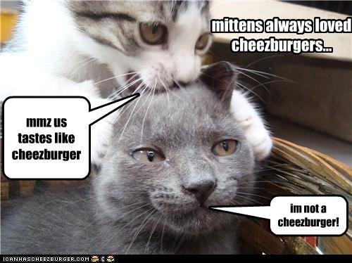 Cheezburger Image 4306847488