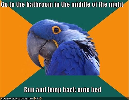 Go to the bathroom in the middle of the night Run and jump back onto bed