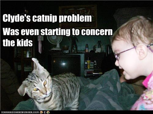 Clyde's catnip problem Was even starting to concern the kids