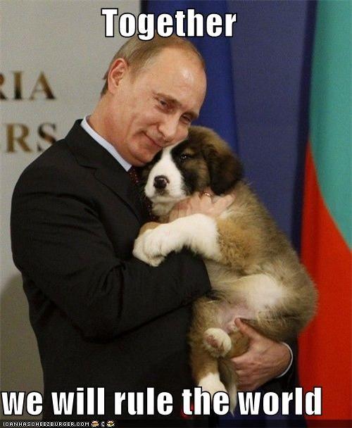 animals funny lolz pets Vladimir Putin vladurday - 4308765440