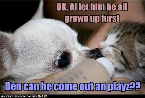 OK, Ai let him be all grown up furst Den can he come out an playz??