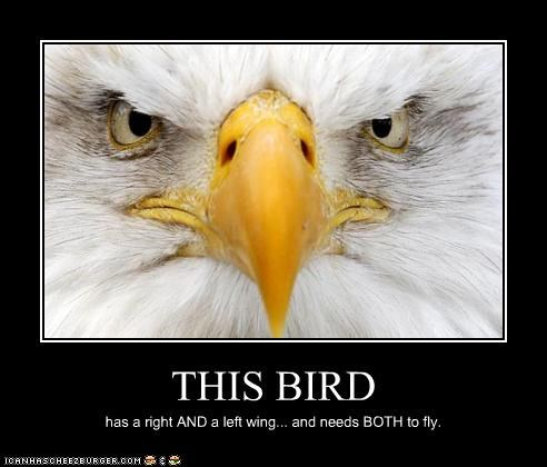 THIS BIRD has a right AND a left wing... and needs BOTH to fly.
