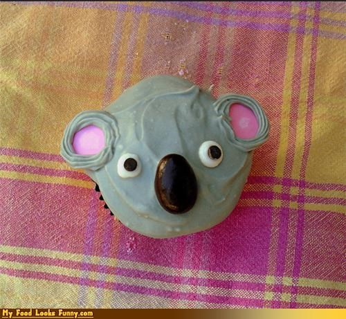 animals,australia,bear,cupcake,face,koala,koala bear,Sweet Treats