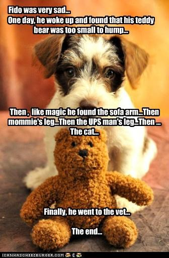 Fido was very sad... One day, he woke up and found that his teddy bear was too small to hump... Then , like magic he found the sofa arm...Then mommie's leg...Then the UPS man's leg...Then ... The cat... Finally, he went to the vet... The end...