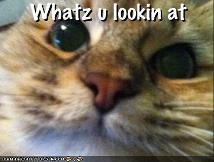 Whatz u lookin at
