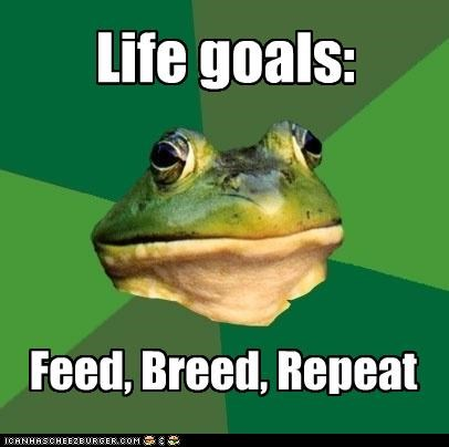 breed,feed,foul bachelor frog,repeat