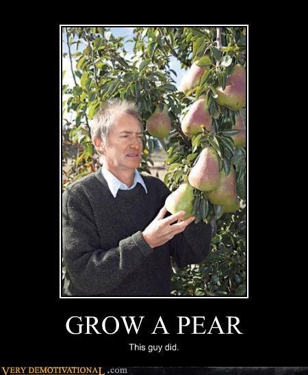 cool guy,grab them,pears,puns,that guy