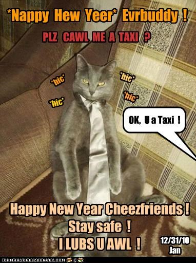 *Nappy Hew Yeer* Evrbuddy ! *hic* *hic* *hic* *hic* PLZ CAWL ME A TAXI ? OK, U a Taxi ! Happy New Year Cheezfriends ! Stay safe ! I LUBS U AWL ! 12/31/10 Jan