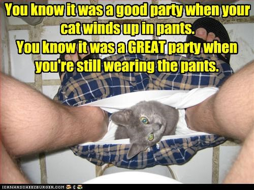 caption captioned cat confused consequences event explanation good great pants Party partying signs