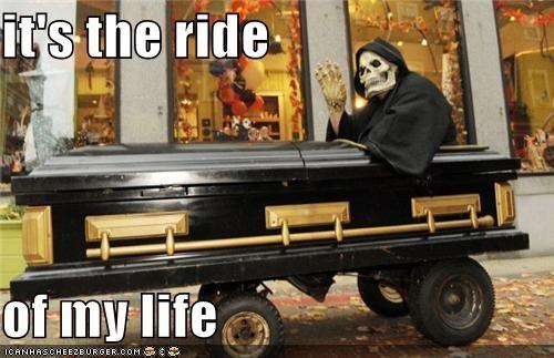 dead,emolulz,life,ride,zing