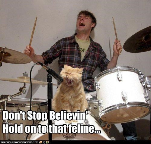 caption,captioned,cat,dont-stop-believing,drums,journey,lyrics,photoshop,pun,singing,song