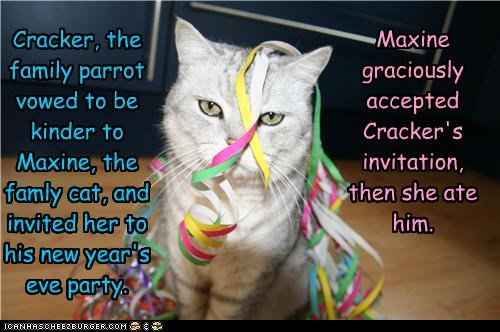Cracker, the family parrot vowed to be kinder to Maxine, the famly cat, and invited her to his new year's eve party.