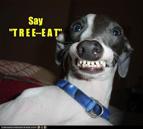 """Say """"T R E E--E A T"""""""