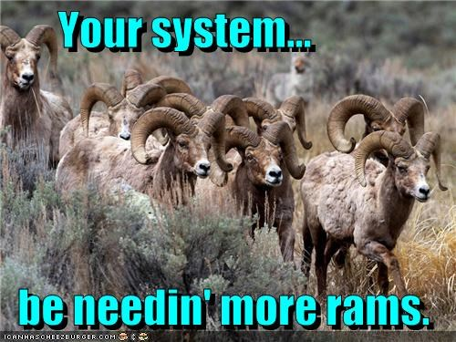 animal caption captioned computer need needing pun ram Rams random access memory requirement system - 4316167680