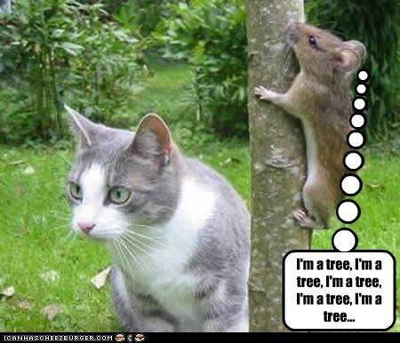 I'm a tree, I'm a tree, I'm a tree, I'm a tree, I'm a tree...
