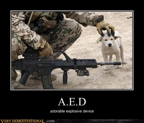 A.E.D adorable explosive device
