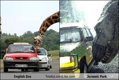 dinosaurs,giraffes,jurassic park,zoo