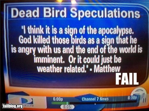apocalypse,birds,failboat,god,g rated,news,television,wait what