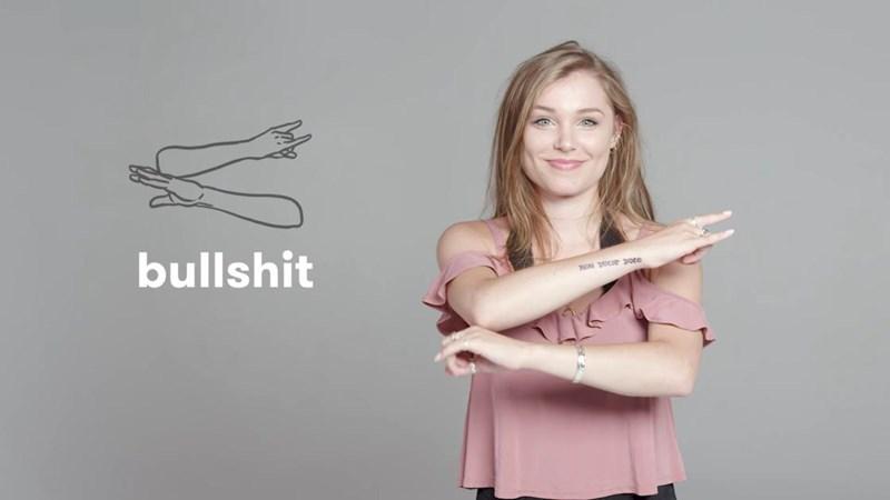 sign language bad words cheezcake Video - 4322565