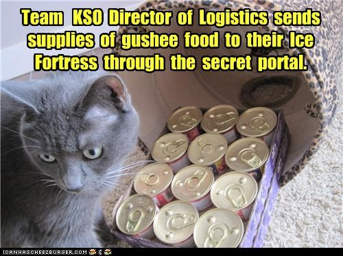 Battle caption captioned cat director food fortress gushy food ice logistics noms Portal supplies team team kso war - 4322942720