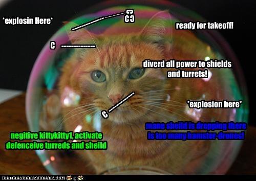 Cheezburger Image 4324075776