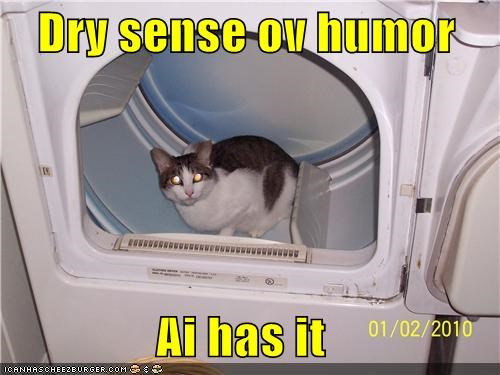 caption captioned cat dry dryer humor i has literalism pun sense - 4324098048
