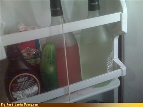 cucumber,defend,defense,fridge,fruits-veggies,pickle,refridgerator,vegetable,wine