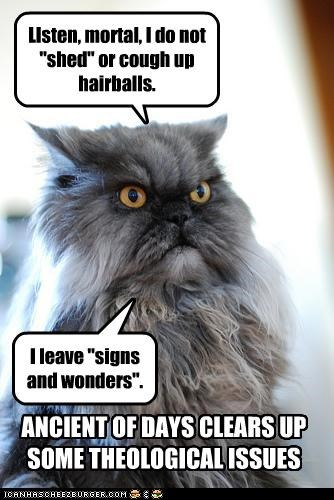 ancient caption captioned cat clarifying explaining hairballs meaning religion shed signs symbolism symbols theology wonders - 4325230336