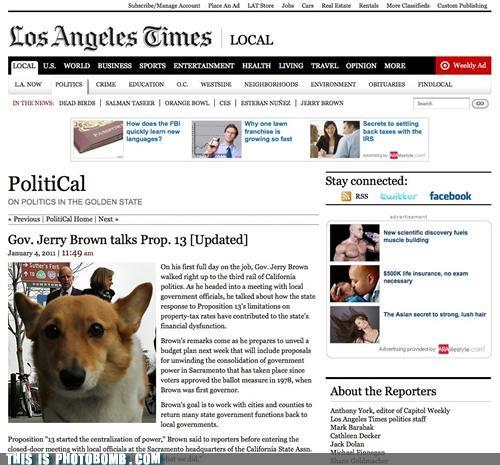 corgi,la times,lol,photobomb,politics,wtf