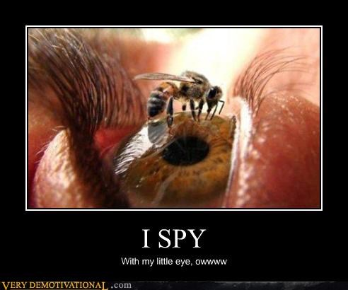 bees,dear lord,eye spy,eyes,unsee