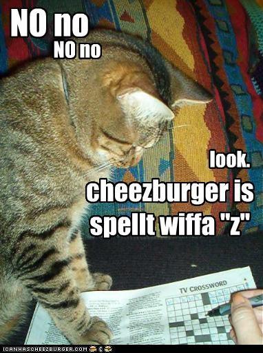Cheezburger Image 4327396864