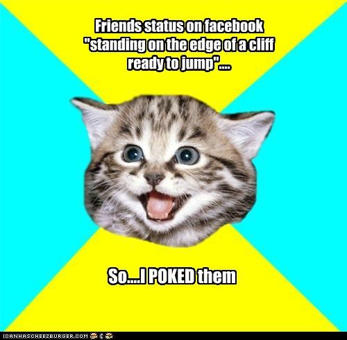 cliff,facebook,Happy Kitten,poke,status,win