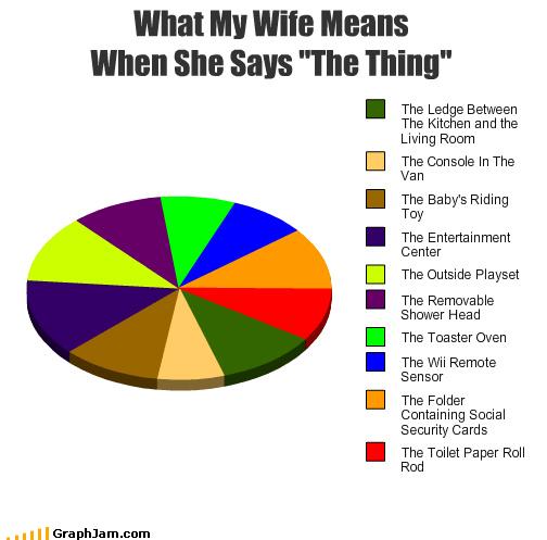 marriage Pie Chart wife - 4328842752