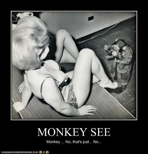 animal,creepy,demotivational,funny,monkey,wtf