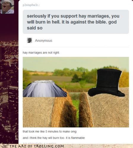 hay,marriage,puns,spelling,tumblr
