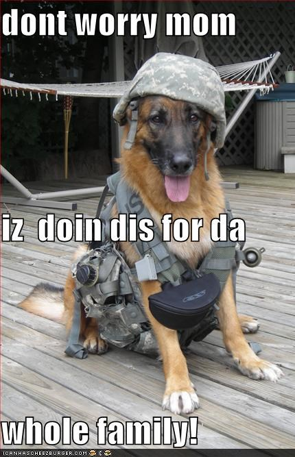 armor army dont worry dressed up enlisting family gear german shepherd Hall of Fame justification mom reason reassurance reassuring uniform worry - 4331104768