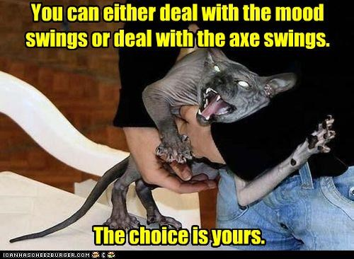 it's a no-brainer You can either deal with the mood swings or deal with the axe swings. The choice is yours.